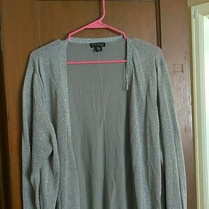 Sliver shimmer Willi Smith cardigan